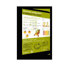 factsheet motorieke peiling